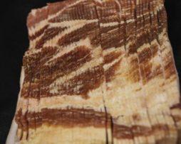 Bulk Bacon
